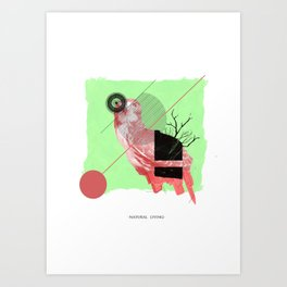 Natural Living Art Print