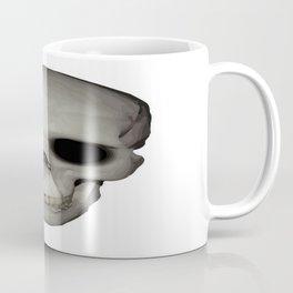 Human Skull Vector Isolated Coffee Mug