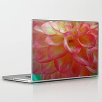 dahlia Laptop & iPad Skins featuring Dahlia  by Lena Photo Art