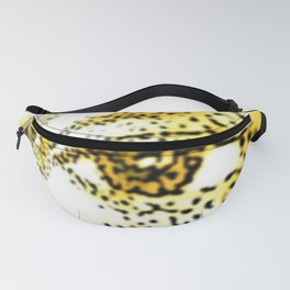 Viewpoints Fanny Pack