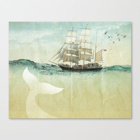 white tail Canvas Print