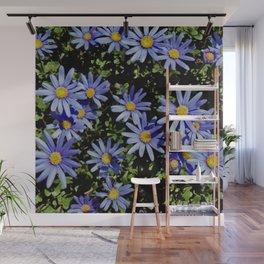 Sunbathing Blue Daisies Wall Mural