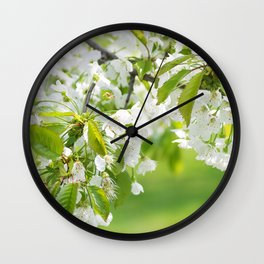 White cherry blossoms romance Wall Clock