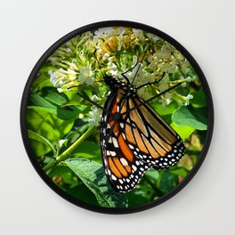 Monarch Butterfly * Wall Clock