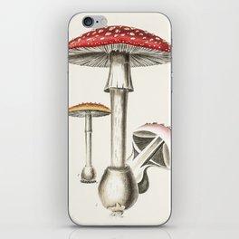 The Real Mushroom iPhone Skin