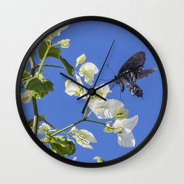 Pipevine Swallowtail Wall Clock