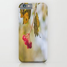 Berry Bokeh Fine Art Photographic Winter Print  iPhone 6s Slim Case
