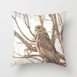 Golden Bateleur Throw Pillow