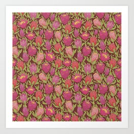 Pink protea flowers with green leaves on brown background Art Print