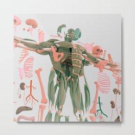 Anatomy Natural 38.2_03 Metal Print