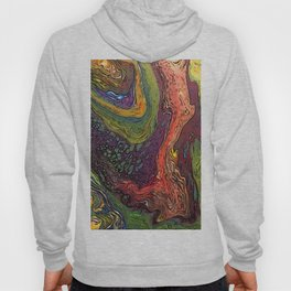 Rainbow Ring Pour Hoody