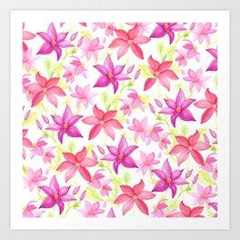Clematis flower Art Print