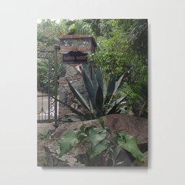 Hakuna Matata, Tropical Gateway Metal Print