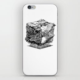 Pigeon Cube iPhone Skin