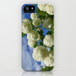 Granny's Snowballs iPhone Case