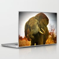 mad Laptop & iPad Skins featuring Mad Elephant by minx267