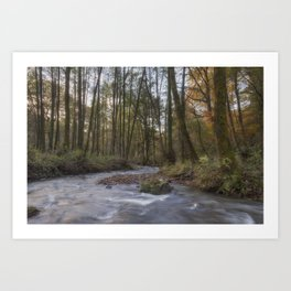 Winter along the Brook Art Print