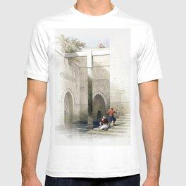 The Nileometer Island of Rhoda illustration by David Roberts T-shirt