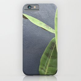 A Banana Tree in a Courtyard, Study 3 iPhone Case