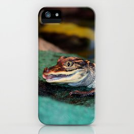Baby Alligator Eating iPhone Case