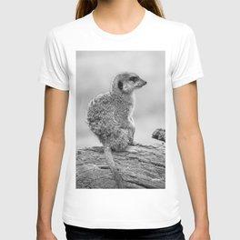 Meerkat (Black and White) T-shirt