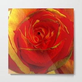 Amber Rose Metal Print