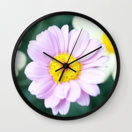 Soft Pink Marguerite Daisy Flower #1 #decor #art #society6 Wall Clock