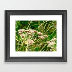 Flower I Framed Art Print