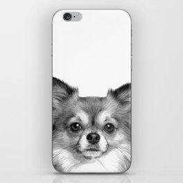 Black and White Chihuahua iPhone Skin