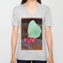 beautiful butterfly Unisex V-Neck