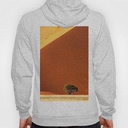 Red dunes of Sossusvlei Hoody