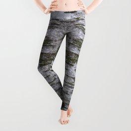 mossy birch Leggings