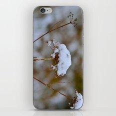 Snow Fall iPhone & iPod Skin