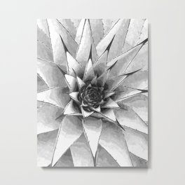 Black and White Cactus Succulent Metal Print