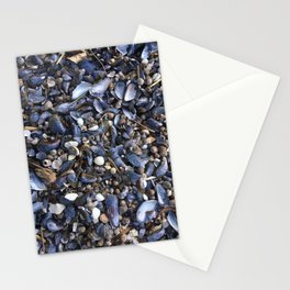 Beach floor with mussels and snails Stationery Cards