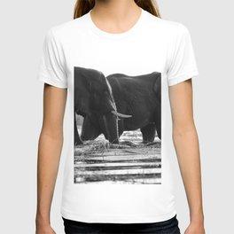 Elephants (Black and White) T-shirt