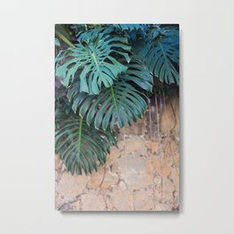 Monstera Print, Tropical Green Beauty Metal Print