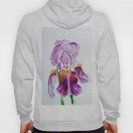 Purple Iris Bloom watercolor by CheyAnne Sexton Hoody