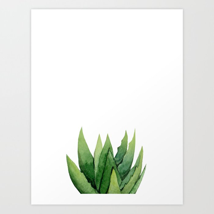 Discover the motif ALOE VERA. by Art by ASolo as a print at TOPPOSTER