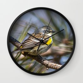 Yellow Rumped Warbler in May Wall Clock