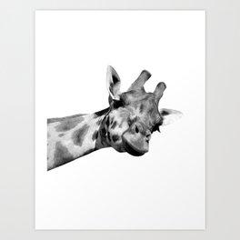Black and white giraffe Art Print
