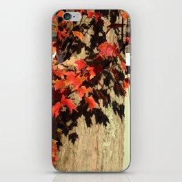 Bright Leaves, Deep Shadows iPhone Skin