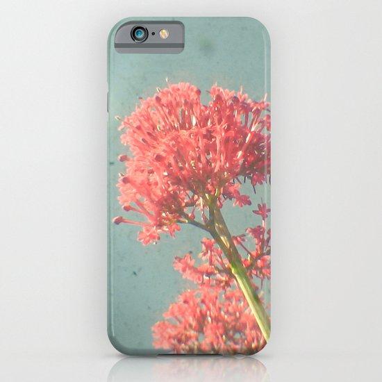 Raspberry Dream iPhone & iPod Case