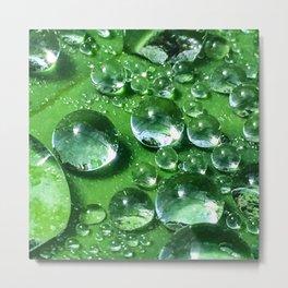 So Fresh and So Green Metal Print