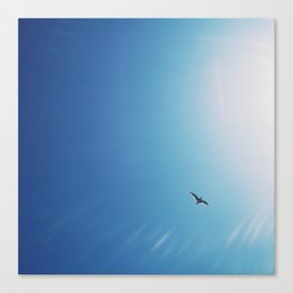 Flying to the sun Canvas Print
