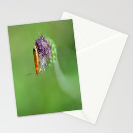 Point Virgule Stationery Cards