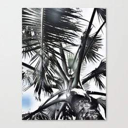 Under The Palm Tree | Tropical | Modern Canvas Print