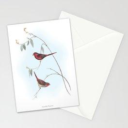HIGHEST QUALITY poster of Estrelda Phaeton Stationery Cards