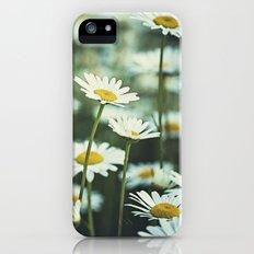 daisies iPhone (5, 5s) Slim Case