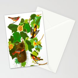 Baltimore Oriole Bird Stationery Cards